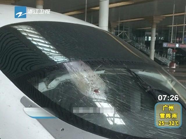 杭州至北京高铁被飞鸟撞裂玻璃截图