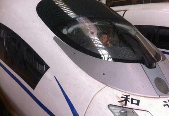 杭州至北京高铁遭飞鸟撞裂玻璃 全体乘客换车