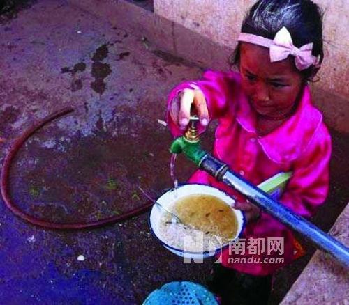 云南丽江小学生用江水泡饭的图片引网友热议。网络图片