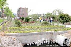 燎原街道大员村湿地公园试点建