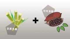 爱普诗推出多翡诺低GI黑巧克力,